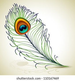 Vector illustration - peacock feather