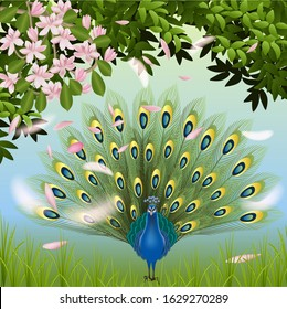 Vector illustration of peacock feathers tree with flowers a beautiful bird stands with its tail spread