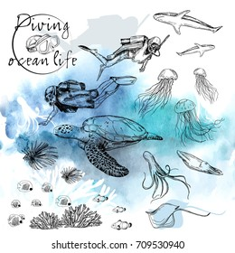 Vector illustration. Pen style vector sketch on underwater theme. Diver and ocean life.