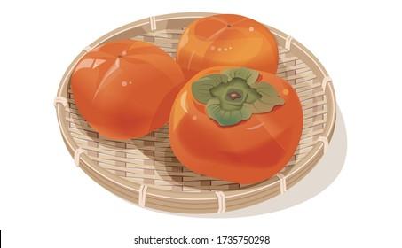 ざるに柿のベクターイラスト
