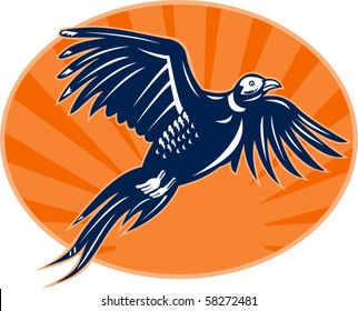 vector illustration of a Pheasant bird flying up with sunburst in the background done in retro style.