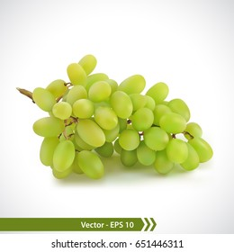 Vector Illustration of Photo Realistic Green Grapes isolated on a white background