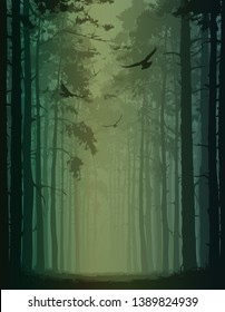 vector illustration with pine forest silhouette. Alley of pines and flying birds.