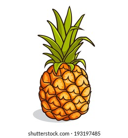 Vector illustration of a pineapple isolated on a white background