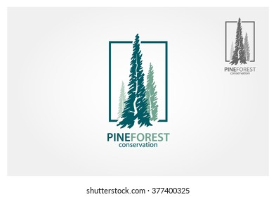 Vector illustration of pines tree. It's good for forest conservation logo
