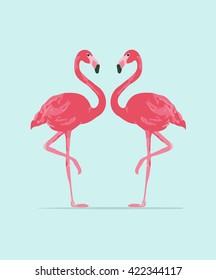 Vector illustration pink flamingo couple. Exotic bird. Cool flamingo decorative flat design element.