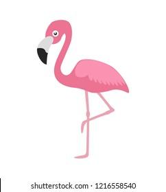Vector illustration pink flamingo isolated on white background