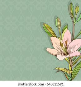 Vector illustration pink lilies on green background