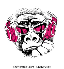 Vector illustration. Portrait of Monkey in a pink glasses and in a headphones. Poster, t-shirt composition, hand drawn style print.