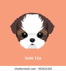 Vector Illustration Portrait of Shih-tzu Puppy. art of dog face
