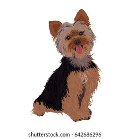 Vector Illustration Portrait of Yorkie. Dog isolated. Flat design. Color vector icon illustration.