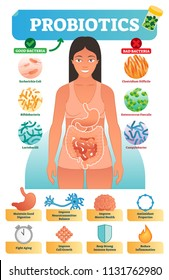 Vector illustration with probiotics. Medical bacteria and health benefits collection poster with escherichia, bifidobacteria, lactobacilli, clostridium, enterococcus faecalis and campylobacter.