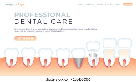 Vector Illustration Professional Dental Care. Natural Microflora Oral Cavity, Prosthetics without Injuring Enamel and Gingiva. Protection Against Oral Problems. Banner Landing Page.
