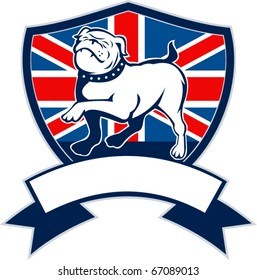 vector illustration of a Proud English bulldog marching with Great Britain or British flag in background set inside a shield with ribbon or scroll in foreground
