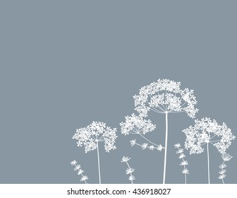 vector illustration of queen anne's lace art flower floral line doole background