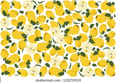 vector illustration of quince and leaf design background white and fruit EPS10