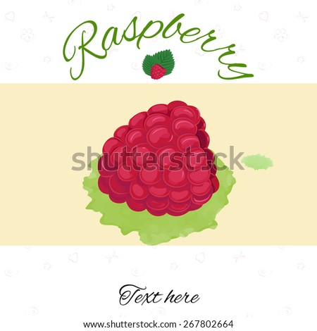 vector illustration raspberry on watercolor imitated stock vector