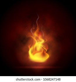 Vector illustration of realistic flame on a black background.