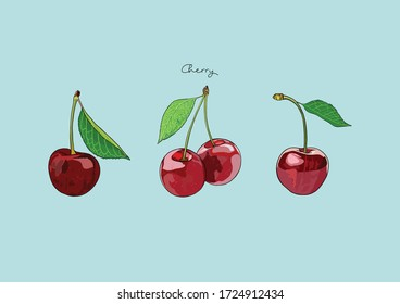 Vector Illustration of Red Cherry, fresh cherries with leaves