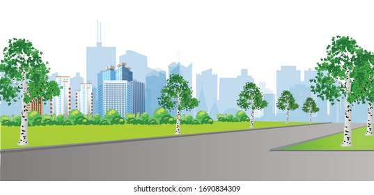 A vector illustration representing a park with birch trees in a modern city.