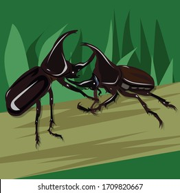 Vector illustration Rhinoceros beetle, Hercules beetle, Unicorn beetle, On the tree,Two beetles fight each other, Behind the grass.