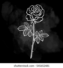Vector illustration of roses. Line drawing. Chalkboard background.