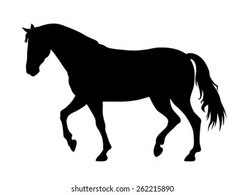 vector illustration of running horse silhouette