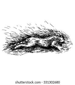 Vector illustration of running jaguar
