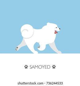Vector illustration with running samoyed dog.
