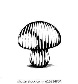 Vector Illustration of a Scratchboard Style Ink Drawing of a Mushroom
