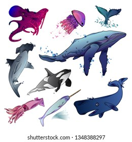 Vector illustration of sea animals. Sketch. Watercolor. Black outline. Isolated on white background.