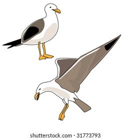 Vector illustration of seagulls flying and standing.