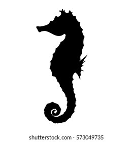 Vector Illustration of a Seahorse isolated on a white background