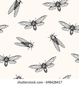 Vector illustration, seamless pattern. Cicadas . Vector pen style sketch.