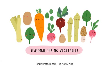 Vector illustration with Seasonal Spring Vegetables on a white background. Smiley cartoon food characters - Leek, Baby Potato, Spinach, Carrot, Beet, Sweet Beans, Radish. Healthy vegetables banner.