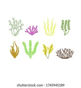 Vector illustration of seaweeds, planting, marine algae and ocean corals silhouettes. Underwater plants for aquarium decor. Isolated set on white background. Nature seaweed marine.