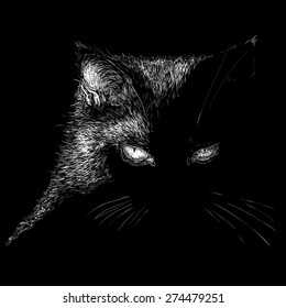 Vector illustration of serious cat.