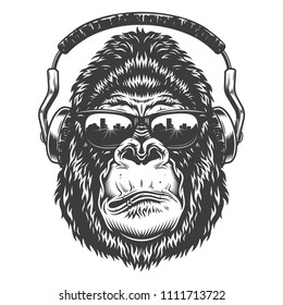 Vector illustration, serious gorilla head in the headphones and glasses on a white background