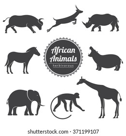 vector illustration set with african wild animals on a white background / vector animals set