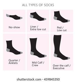 Vector illustration. Set of all types of socks.