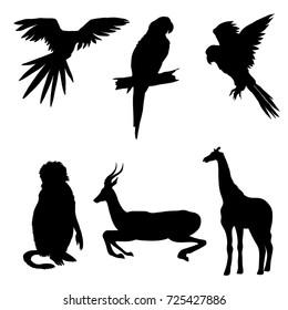 Vector illustration. Set of animals, parrot, giraffe, monkey gazelle Black silhouette