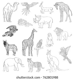 Vector illustration. Set of animals, parrot, giraffe, monkey, gazelle, elephant, rhinoceros kangaroo camel lion zebra crocodile snake tiger Black line