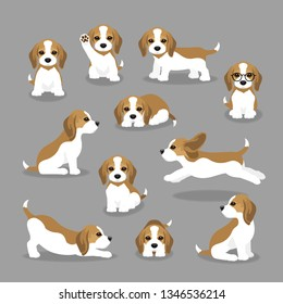 Vector illustration set of beagle dog in different poses. Cute puppy in modern flat style. Animal character design isolate background.