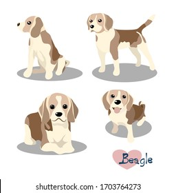 Vector illustration set of Beagle dog dog in different poses.Hand draw on white background.
