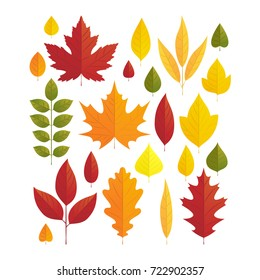 Vector illustration, set of bright autumn leaves