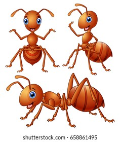 Vector illustration of Set of brown ants cartoon