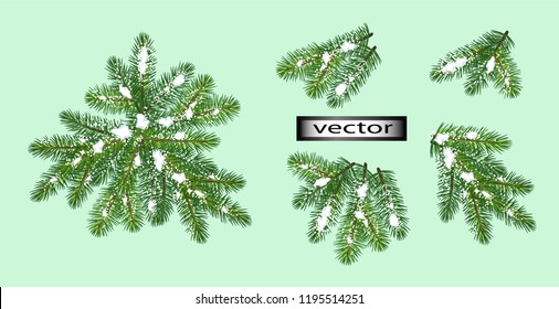 Vector illustration set for Christmas tree branch design snowflakes and ice on Christmas tree for holiday isolated on green background