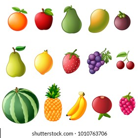 vector illustration of set collection of fresh fruit