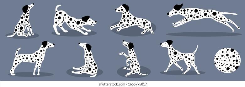 Vector illustration of set dalmatians
