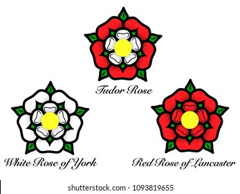 Vector illustration of a set of English Tudor rose - white rose of York, Red Rose of Lancaster. The traditional floral heraldic emblem of England.